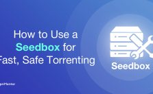 3 Other Uses of Seedbox That You Must Know About
